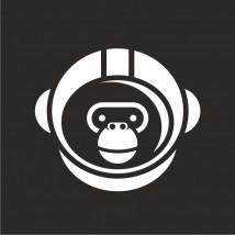 Ape Astronaut