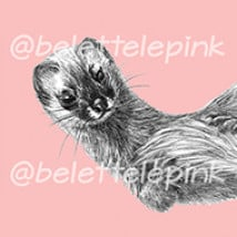Belette Le Pink