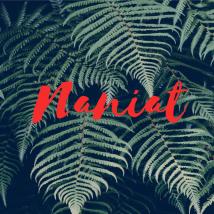 NAniat Culture