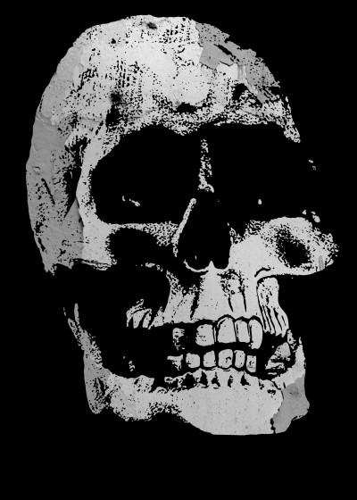 Denis Marsili Skull Prints   Displate Prints on Steel