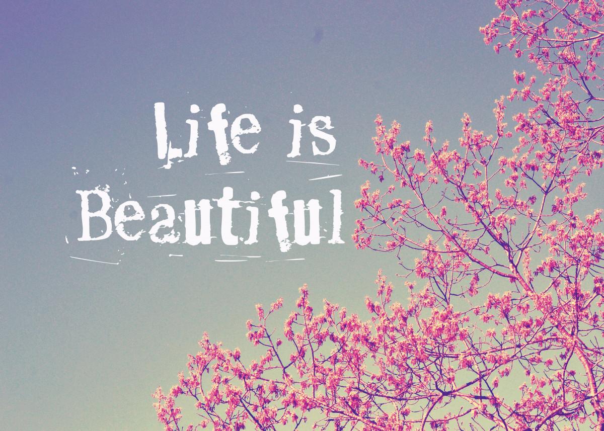Life is Beautiful 2803