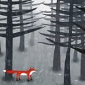 I love forests, and who better to find there than Mr. Fox?  Unless, of course, you are a hen...