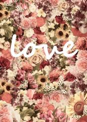 roses flowers love romantic nika vintage floral sweet