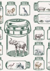 animal preservatio jar concept art elephant tiger panda bear gorilla turtle penguin wolf whale polar