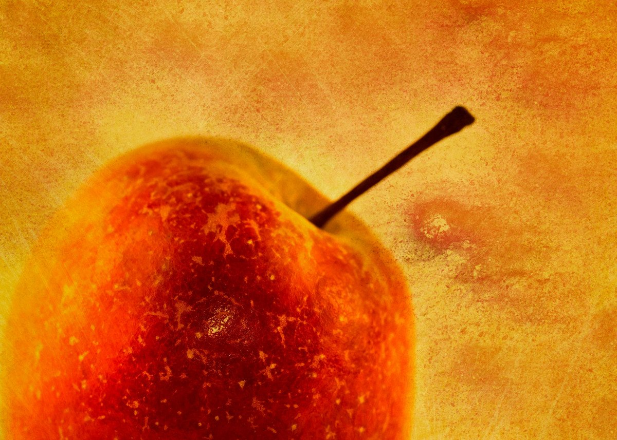 My first Apple on my Apple tree