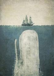 whale mobydick ship sea ocean nautical