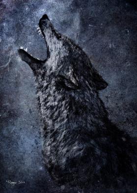 wolf the wild moonlight dark scream space