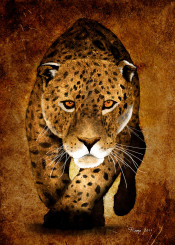 leopard tiger cater sand yellow sepia africa sun rough wild digital paint painting roma