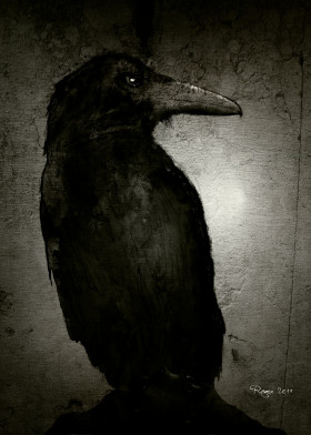 crow raven the wild painting digital paint animals dark black night scary