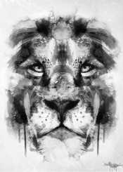 lion cool blackwhite watercolors animals wild