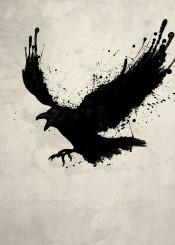 raven bird odin hugin munin mythology color stains spatter