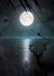 moon romantic woods forest nature deer bird moon moonlight tree night magic sea sky green blue