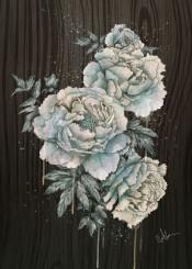 peony peonias flowers wood