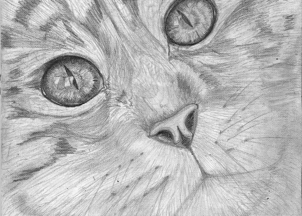 Starry eyed Cat 22301