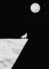 wolf moon nature black white