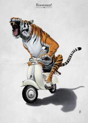 tiger vespa animal cat wild transport vehicle bike motorcycle feline stripes orange riding