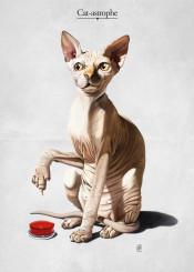 cat sphinx button red feline catastrophe skin fur press disaster animal art illustration behaviour