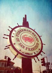 fishermans wharf fishermanswharf sanfrancisco san francisco sign harbour fish crab travelsign city