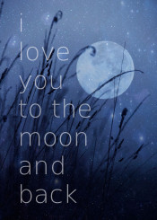 love you to the moon blue night starry lights stars romantic gift couple quote typo text grass dark