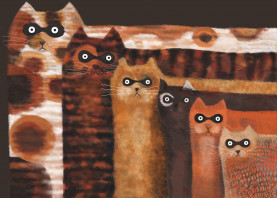 cats cute funny humor quirky animals