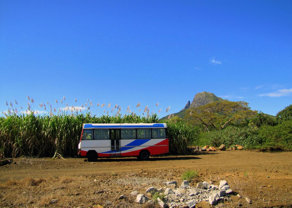 Bus Stop (Mauritius) 27314
