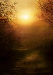 landscape sunset nature textures