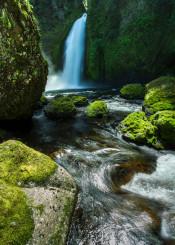 waterfall moss oregon