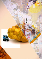 lemon nature pop art collage coke elefant abstract landscape microcosmos stilllife