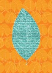 leaf leaves nature pattern tropical plant orange tangerine yellow mint