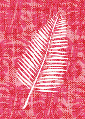 leaf leaves nature pattern tropical plant red pink palm texture