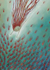 children illustration red octopus swim dive
