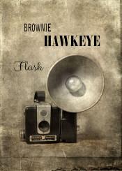 camera flash brownie hawkeye vintage antique