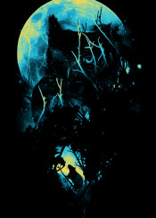 owl dark moon mouse animals bird silhouette nature