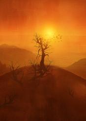 landscape orange sunset nature illustration