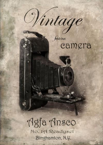 Jill Battaglia Vintage Cameras   Displate Prints on Steel