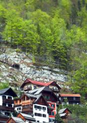 chalet mountain ski vertical green brown red rust orange alpine halstatt austria trees