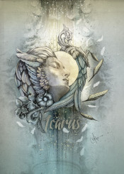 icarus wings sun stone