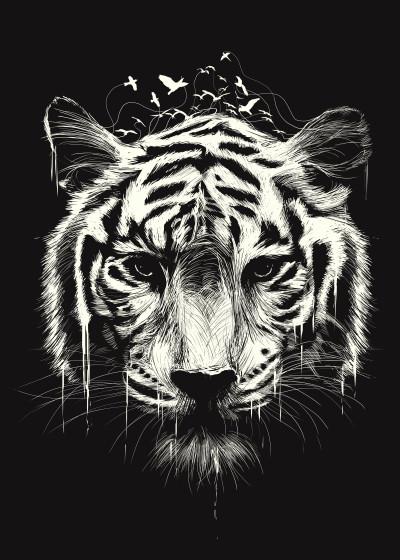 Lou Patrick Mackay Animals   Displate Prints on Steel