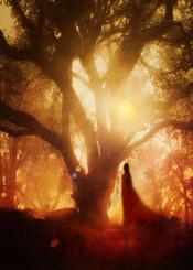 tree fineart nature woman autumn