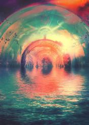 water birds cosmic light