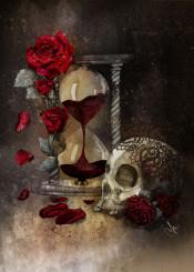 time roses skull
