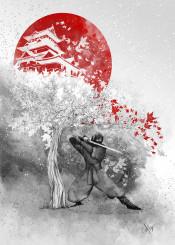 ninja warrior wind
