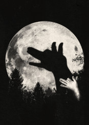 ronan lynam moon nature night clever creative shadow puppet wolves wolf negative space