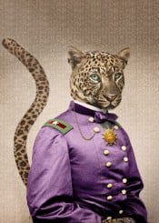 leopard viceroy cats animals vintage humor antique surreal royal dignitary