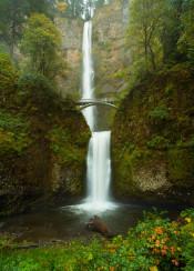 multnomah falls oregon waterfall bridge