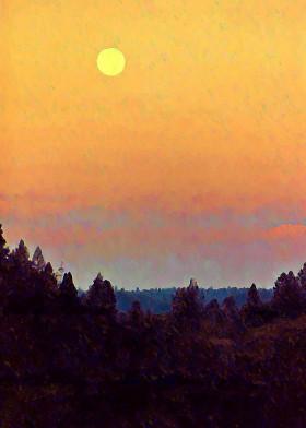 sun haze abstracted forest sky