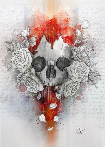 Marine Loup Skulls and Dreams   Displate Prints on Steel