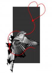 bird trash illustration graphic digitalgarphic