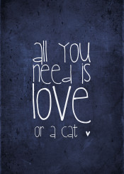 cat love meow blue chalkboard words text typography quote funny beatles song all you need is love