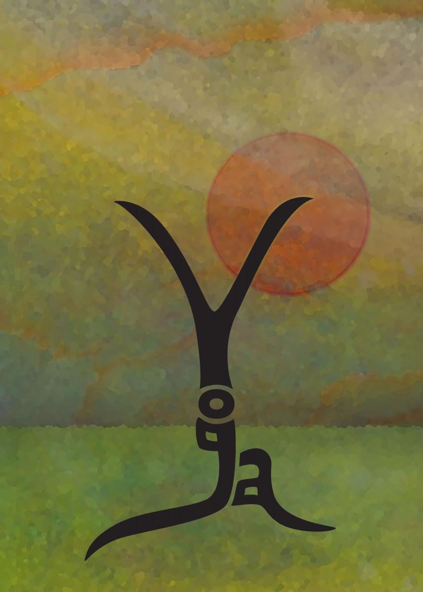 Yoga 2 51623